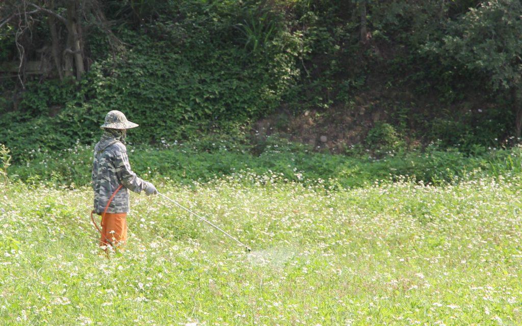 可以傷害草的,也就會傷害你的作物,對土壤的破壞影響更大!