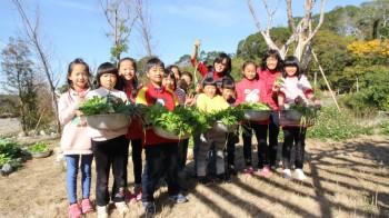 食農教育-蕉埔國小採收