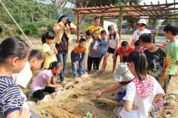 蕉埔國小--校園食農教育