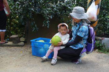 李世清白柚