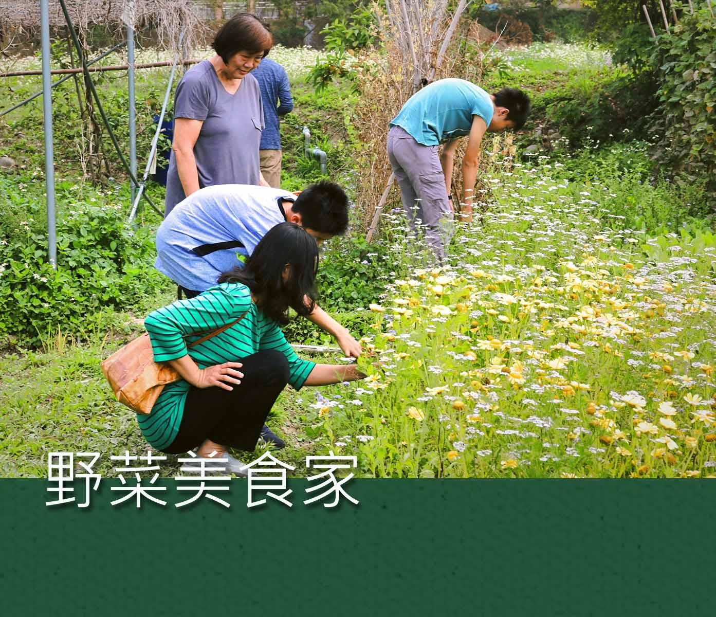 裡山塾體驗活動|野菜美食家 | 裡山塾