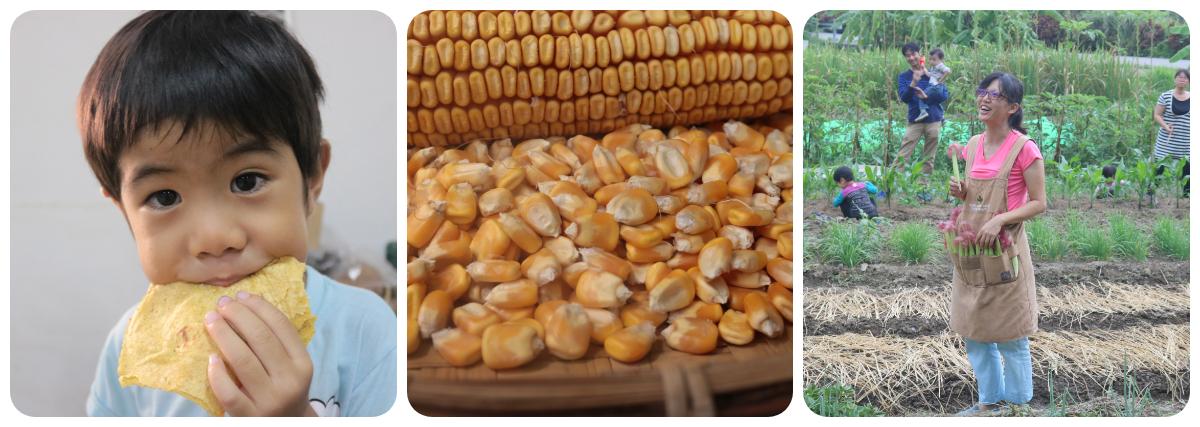好食玉米限時批