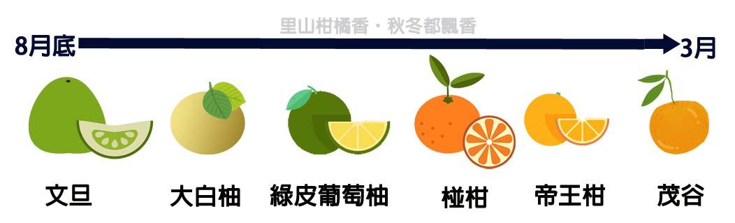 里山柑橘香產期圖