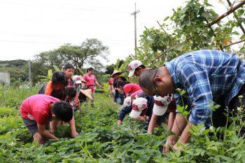 校外教學-小小菜園農藝家
